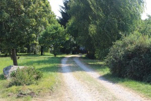 Lenzwald driveway 2015